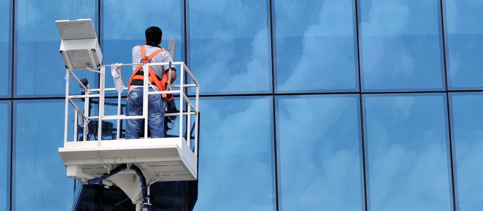 Window Cleaning Services
